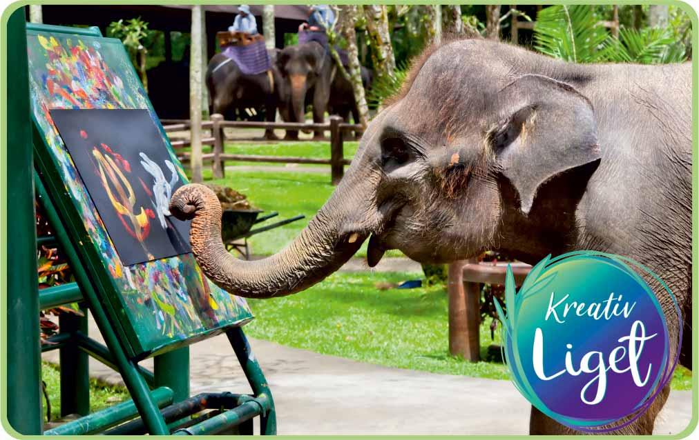 KreatívLiget Ajándékkártya Elefánt